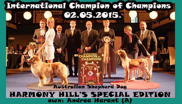International Champion of Champions - Winners of the International All Breed Dog Show CACIB Zadar, Saturday, 2 May 2015